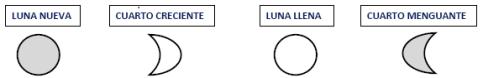 fases-lunares